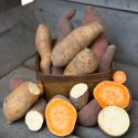 Winter Salad: Roasted Sweet Potato Salad with Citrus Vinaigrette