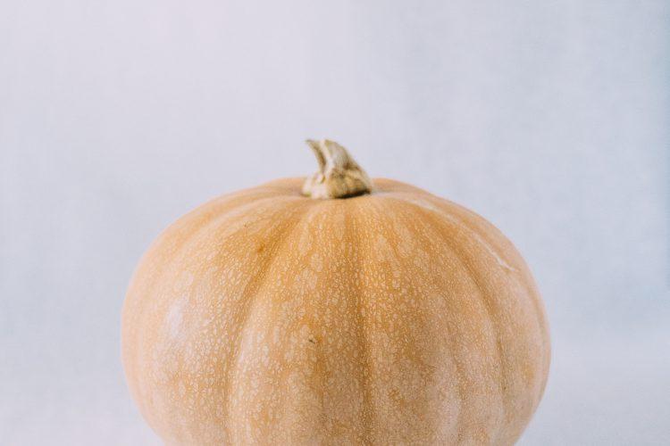 Seminole Pumpkin Recipes