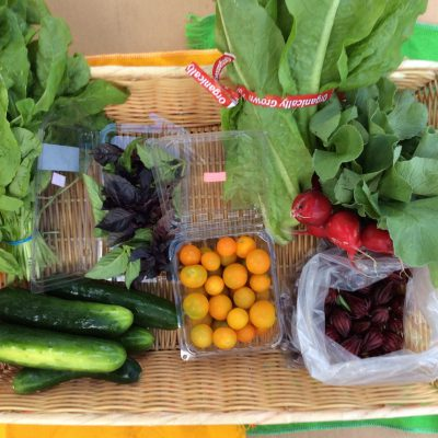 CSA Share for week of October 18, 2015