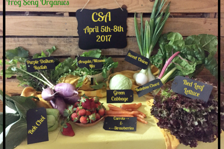Weekly Spring Share April 5-8