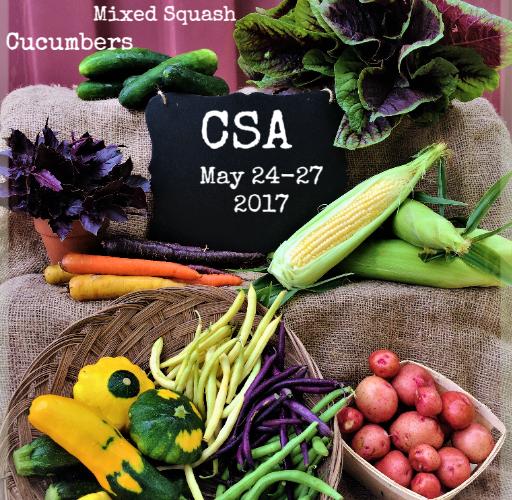 Weekly Spring Share May 24-27