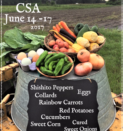Weekly Spring Share June 14-17