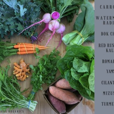 Weekly CSA Share December 12-16