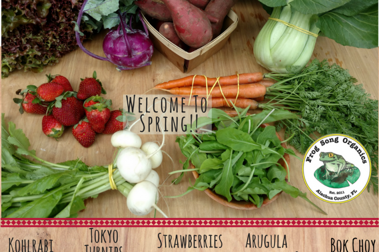 Welcome to the FIRST Spring Share of the Season!!