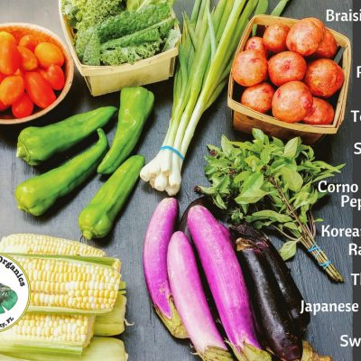 Weekly CSA Share June 6-9