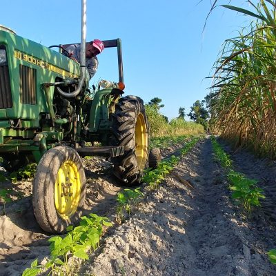 Farmer John's Field Report 9.17.18