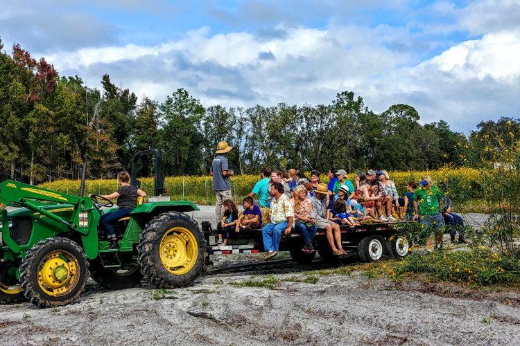 Farmer John's Field Report 11.12. 18