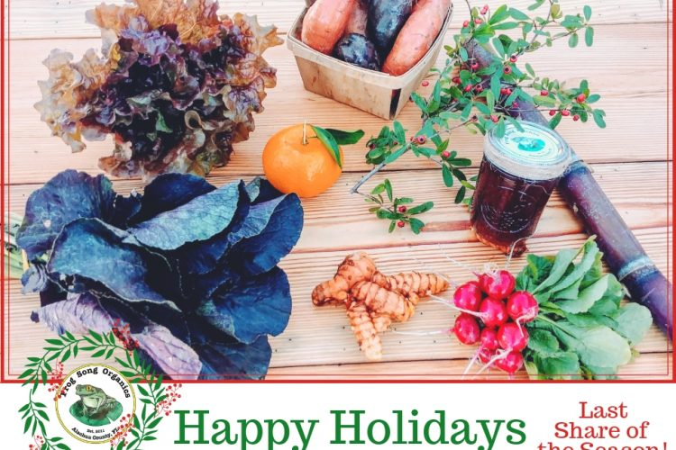 Holiday CSA Share December 19-22