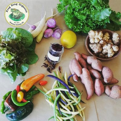 Weekly CSA Share December 5-8