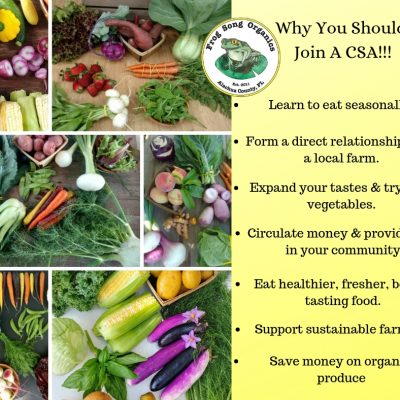 Join Our Spring CSA