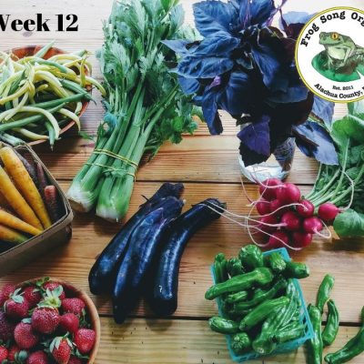 Weekly CSA Share: Week 12, May 22-25