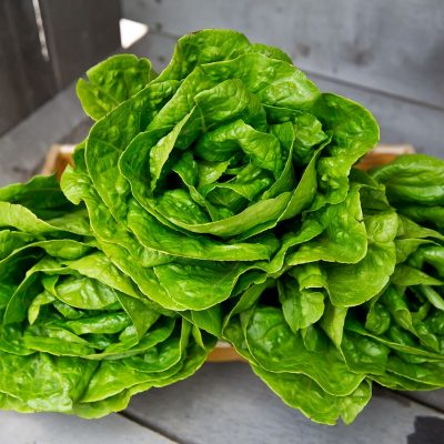 Salad Season is Here!