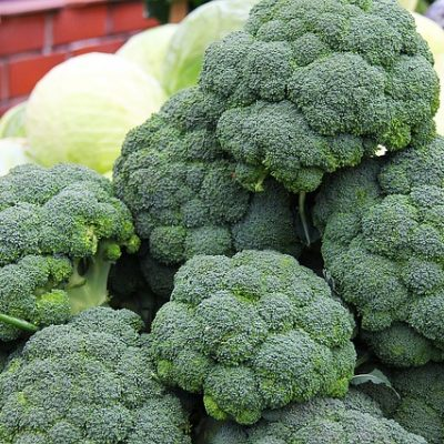 Venison Stir Fry with Broccoli, Carrots & Hakeurei Turnips