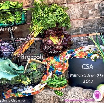 Weekly Spring CSA March 22-25, 2017
