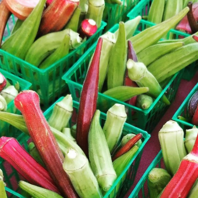 Fresh Pickled Okra Recipe for Two Pounds of Okra